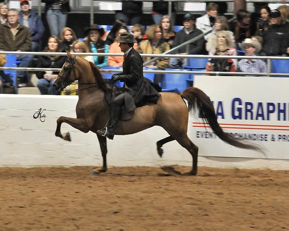 Scottsdale 2011-8721 copy