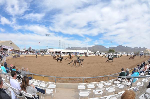 Scottsdale 2011-8431 copy
