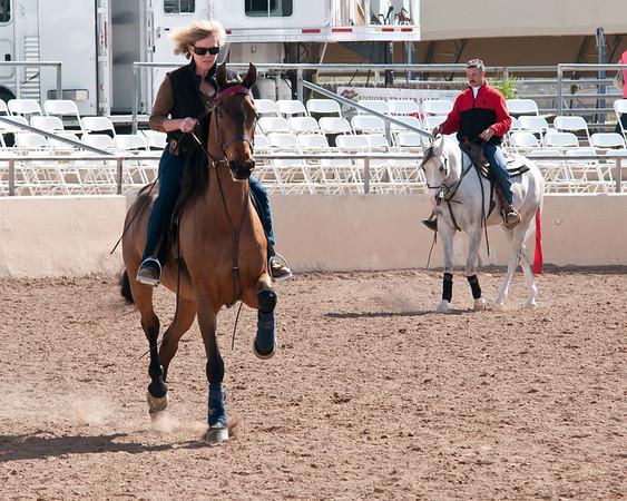 Scottsdale 2011-8335