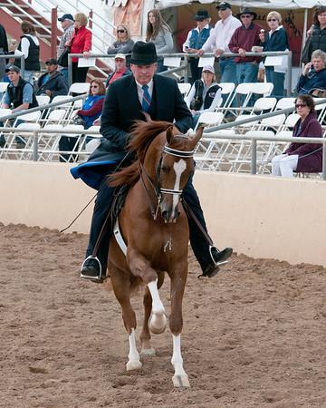 Scottsdale 2011-8605