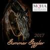 2017 Summer Sizzler copy