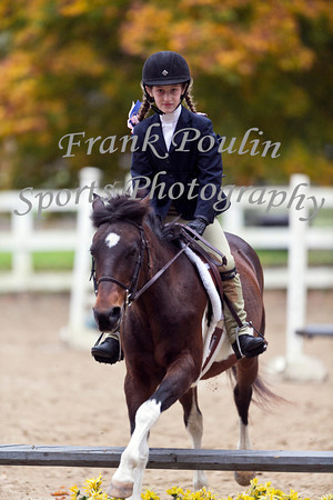 WNEPHA Horse Show 10/6/2013
