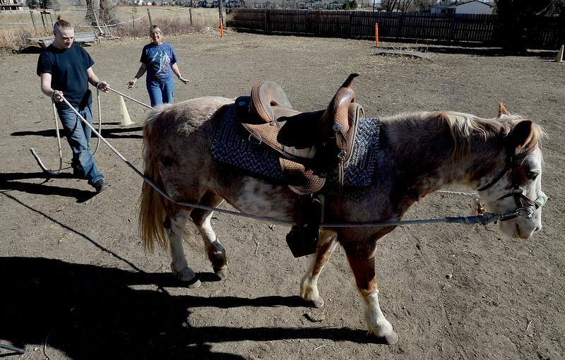 Sunny Horse Foundation