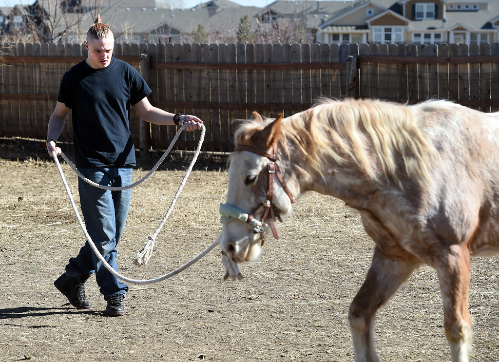 . David Wagner learns how to lead Chiquita.  David Wagner works with trainer, Pam Thode, to get to know Chiquita the horse. Sunny Horse Foundation, a Broomfield nonprofit, wants to host a six-week horse therapy program in April that will benefit local veterans. Cliff Grassmick  Staff Photographer  February 16, 2017
