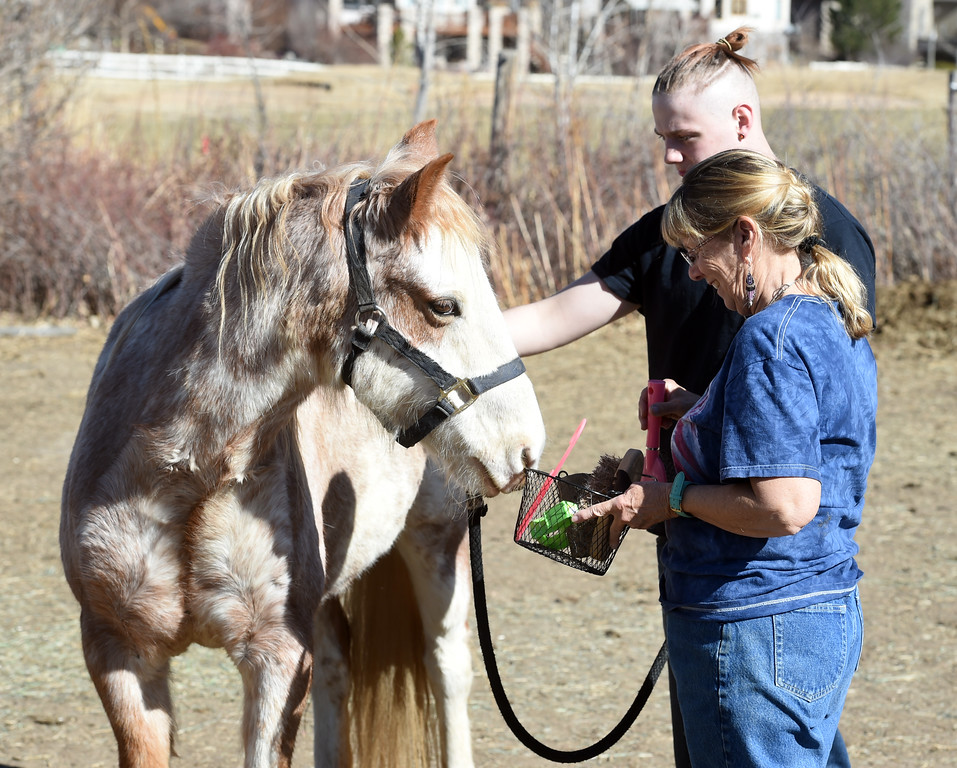 . Pam Thode teaches david Wagner how to brush a horse during the session.  David Wagner works with trainer, Pam Thode, to get to know Chiquita the horse. Sunny Horse Foundation, a Broomfield nonprofit, wants to host a six-week horse therapy program in April that will benefit local veterans. Cliff Grassmick  Staff Photographer  February 16, 2017