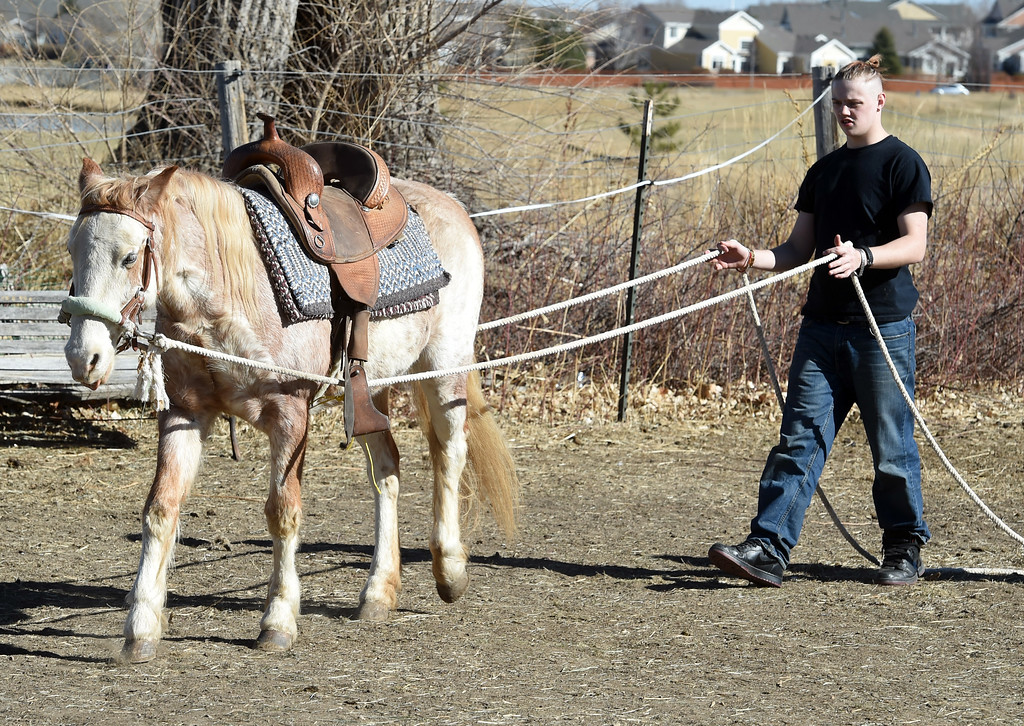 . David Wagner learns how to control Chiquita.   David Wagner works with trainer, Pam Thode, to get to know Chiquita the horse. Sunny Horse Foundation, a Broomfield nonprofit, wants to host a six-week horse therapy program in April that will benefit local veterans. Cliff Grassmick  Staff Photographer  February 16, 2017