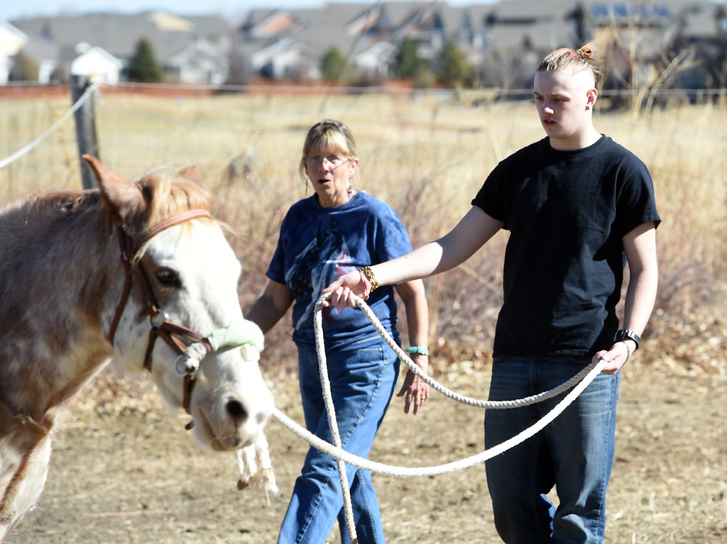 . David Wagner learns how to lead Chiquita from Pam Thode.  David Wagner works with trainer, Pam Thode, to get to know Chiquita the horse. Sunny Horse Foundation, a Broomfield nonprofit, wants to host a six-week horse therapy program in April that will benefit local veterans. Cliff Grassmick  Staff Photographer  February 16, 2017