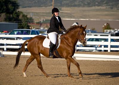 Beginner Novice Horse