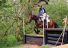 357 - Joanne Foley riding VOIGTS BAY ( BE100 Sun Section H, fence 10 ) Jumped the course clear