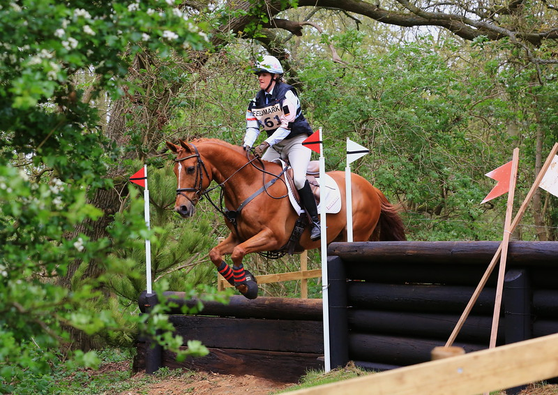 361 - Diana Grant riding CLASSIC JASPER ( BE100 Sun Section H, fence 10 ) Jumped the course clear