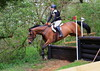 ?? 310 - Hazel Hamilton riding AIRE DE MEDOC (Coltsfoot Equestrian BE100 Section G, fence10) Jumped the course clear