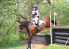 362 - Sophie Benton riding HAYESTOWN DANNY ( BE100 Sun Section H, fence 10 ) Jumped the course clear