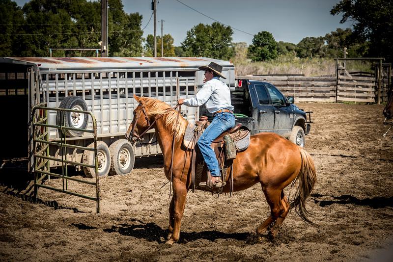 BT Ranch Rodeo 2016 2079