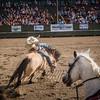 BT Rodeo 20175271-2