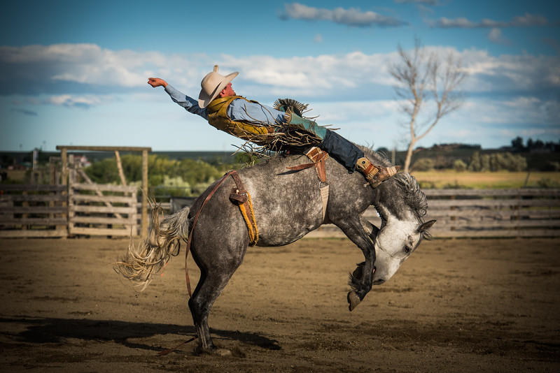 BT Rodeo 2017 1432-Edit