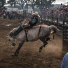 BT Rodeo 20177078
