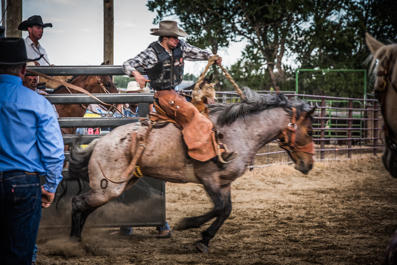 BT Rodeo 20175539-Edit