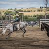 BT Rodeo 20175299-2