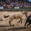 BT Rodeo 20175277