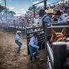 BT Rodeo 20177072