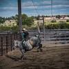 BT Rodeo 20175304