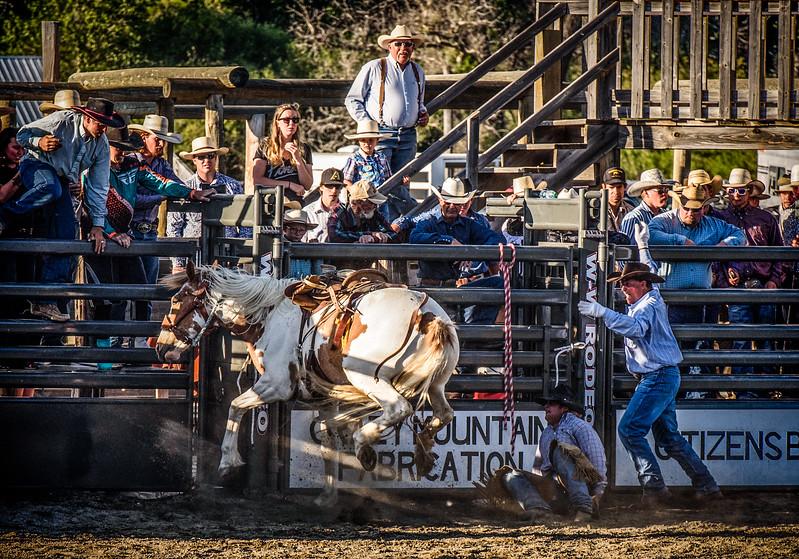 BT Rodeo 20175798-Edit