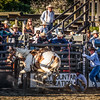 BT Rodeo 20175798-Edit
