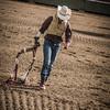 BT Rodeo 20175279-2
