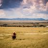 Mesquite Trail 2014-2308
