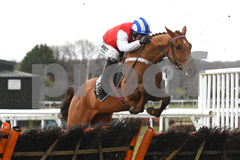 Winter Jumps Raceday, Horse Racing, Plumpton Racecourse, East Sussex, United Kingdom - 10 Feb 2020