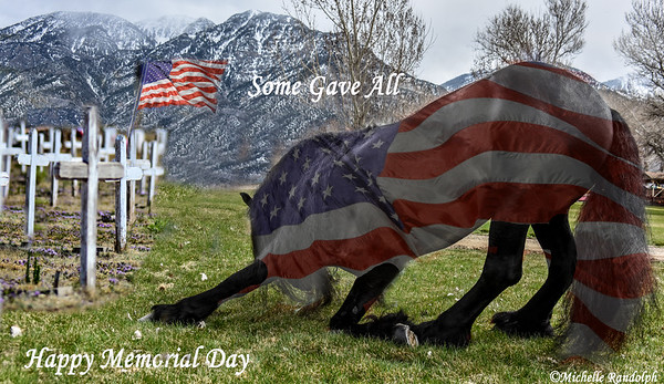 asome gave all