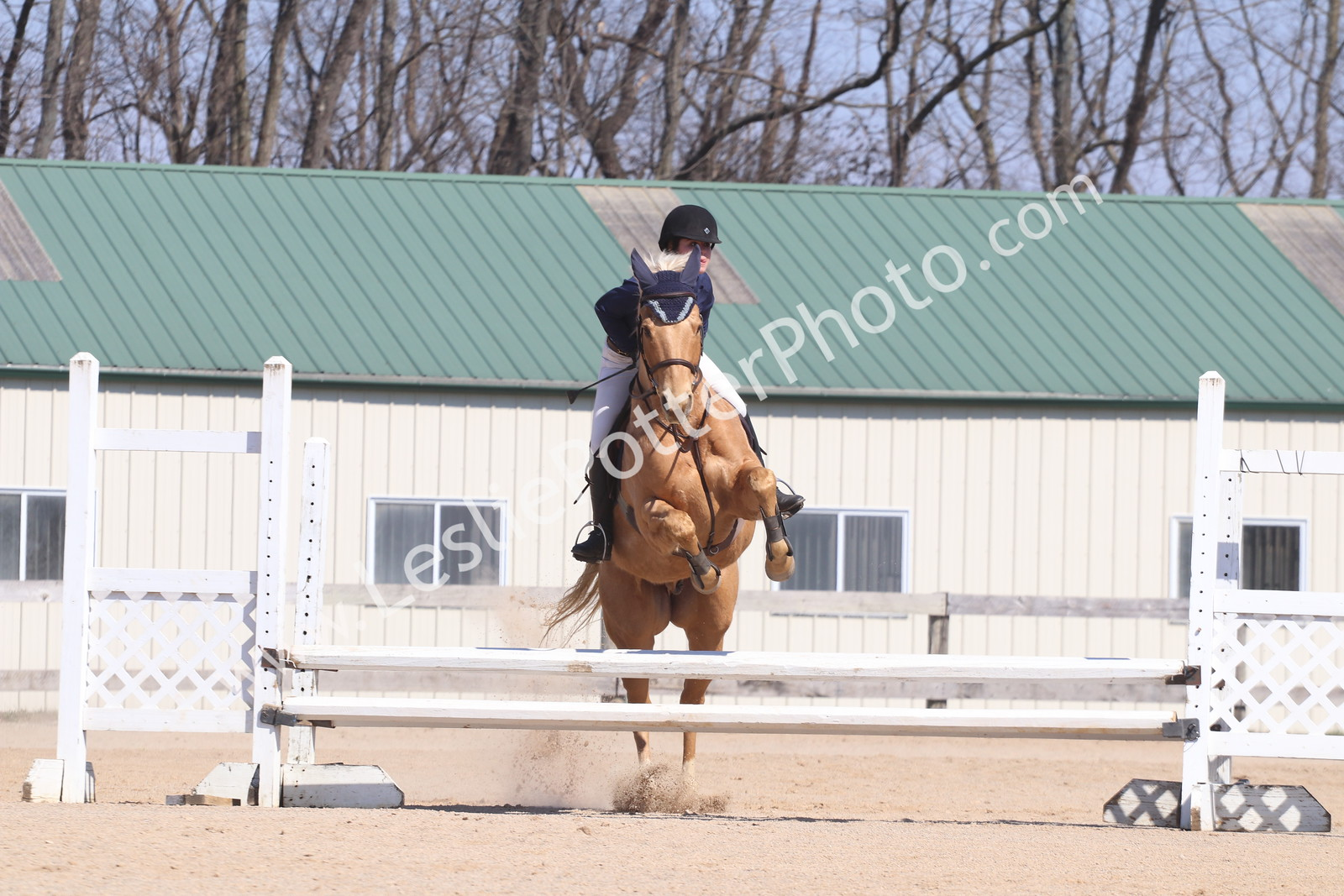 Ballyhigh Stables March 2017 Schooling Show