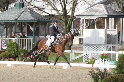 2014 U.S. Dressage Finals, Kentucky Horse Park, Lexington, Kentucky