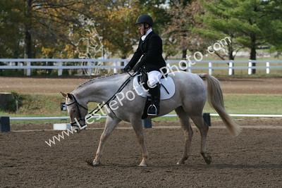 2008 Oktoberfest Horse Trials, Kentucky Horse Park, Lexington, KY