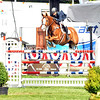 American Gold Cup<br />  FEI 4 star