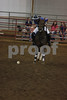 Horse Festival - University of Arkansas : 2 galleries with 1066 photos