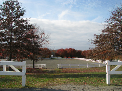 NJ Horse Park Turkey Trot 2010