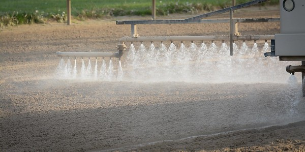 Add water....and anaother round of the harrows