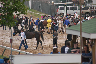 The entourages start the walk; 10 is Regal Ransom; 19--stablemate Desert Party. 16 is Pioneerof the Nile