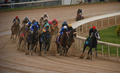Join in the Dance leads into the backstretch; Mine that Bird is last