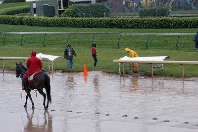 The exit from the turf course
