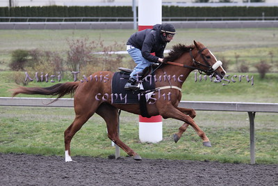 Emerald Downs 4-9-2011