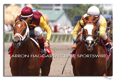 Travelin Man and John Velazquez, hold off Jersey Town with Edgar Prado in the 61/2 f Sir Shackleton Stakes at Gulfstream Park. March 31, 2012