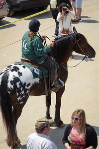 Lead pony poses