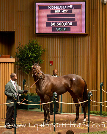 Royal Delta, the 2011 Breeders Cup Ladies Classic winner, sold for $8.5 million to Besilu Stables at Keeneland on 11.08.2011
