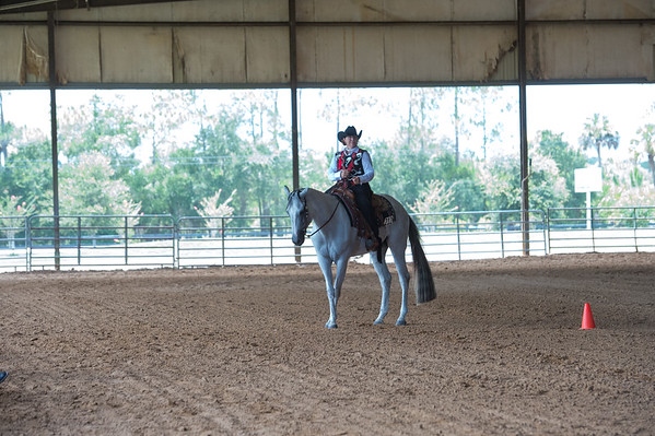 Class 21 Level 1 Am W/T Horsemanship