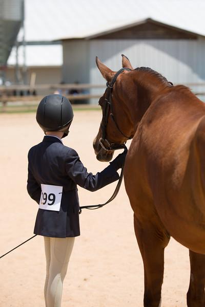 HorseFriends benefit Open Horse Show