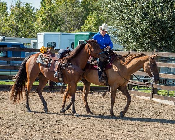 VICKI  BOTH HORSES