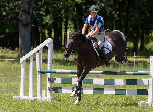Meadows' Vineyard show jumping and dressage
