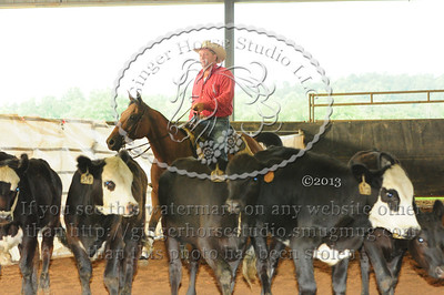 Cow Classes Friday 26